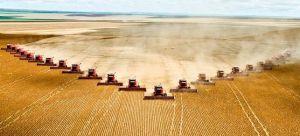 Agricultura intensiva industrial basada en el monocultivo